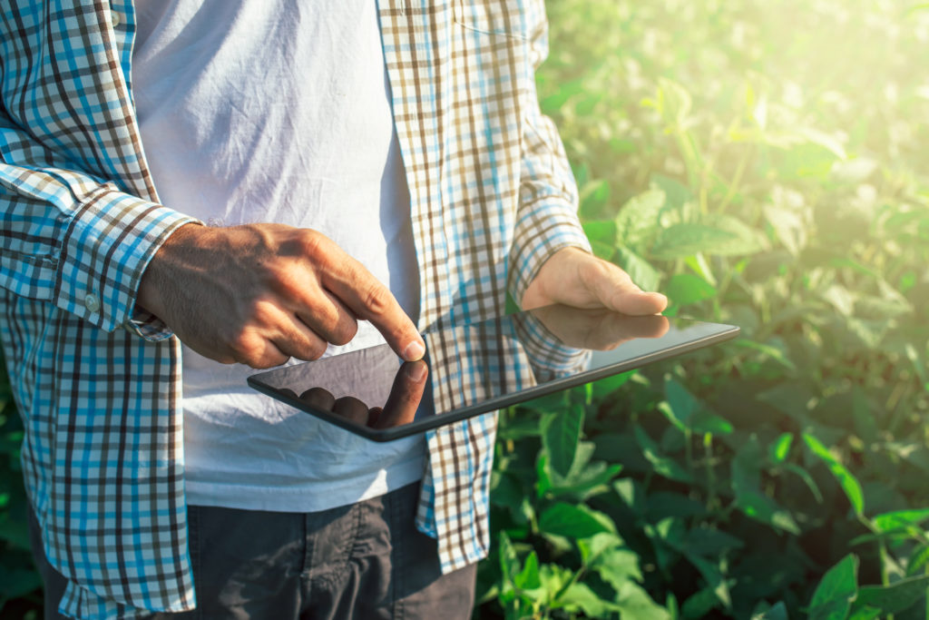 agricultura ecológica, ganadería ecológica