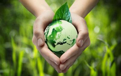 Ganadería y sostenibilidad medioambiental II